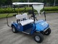 廣東東之尼二座電動高爾夫球車