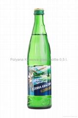 "Mineral carbonated water ""Polyana Kvasova"" 0,5 l."
