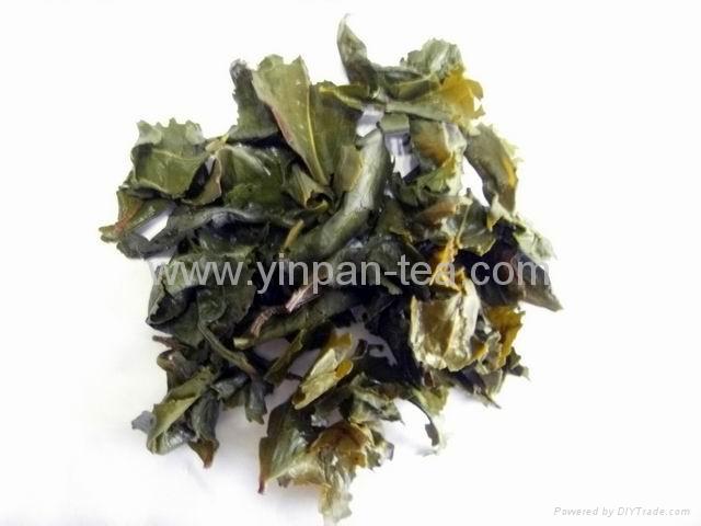 Mild aroma  Ti Kuan Yin 4