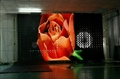 flexible and transparent and mobile led display screen 2
