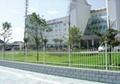 市政花园护栏网