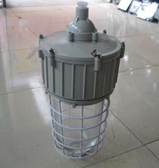 供应CCD93系列防爆照明灯(ⅡC)/防爆照明灯
