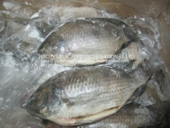 Tilapia-Frozen Black Tilapia Gutted & Scaled