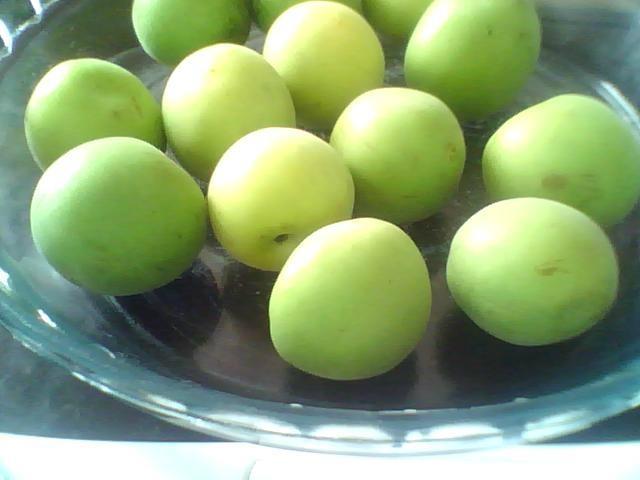 plum essence 2