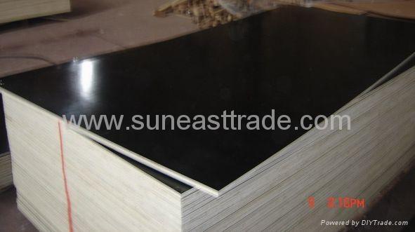 phenolic coated plywood