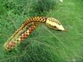 蟒蛇填充毛絨玩具