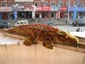 仿真鱷魚抱枕毛絨玩具禮品 4