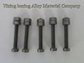 molybdenum screw