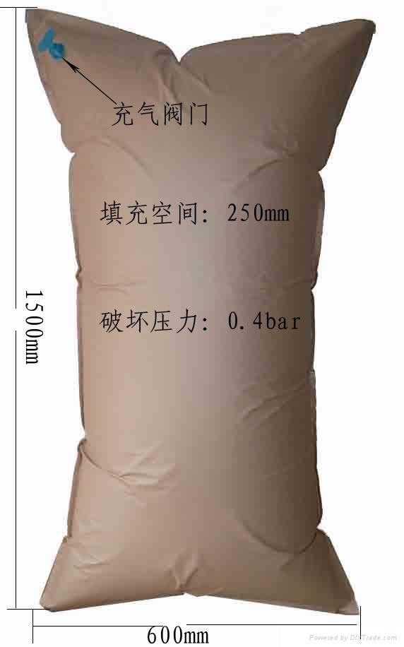 集装箱充气袋 1