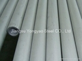 TP310S stainless steel pipe & tube