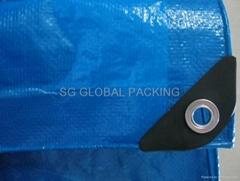Waterproof PE Tarpaulin Fabric