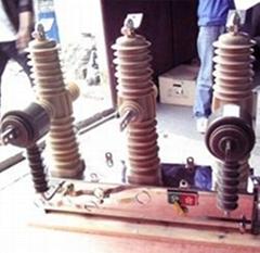 ZWP-24KV固封极柱式真空高压断路器
