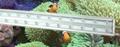 水族鱼缸照明观赏专用led水族灯60cm 2