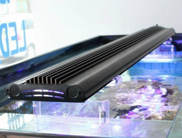 水族鱼缸照明观赏专用led水族灯60cm 3