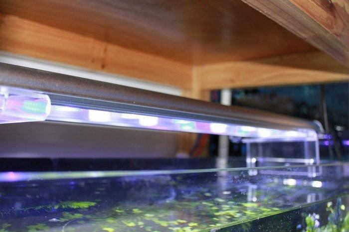 水族鱼缸照明观赏专用led水族灯60cm 4
