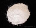 Dicalcium phosphate(DCP)  1
