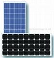 solar modules  85W  80W  75W