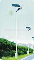 太陽能路燈 FDS-10827