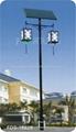太陽能路燈 FDS-10829