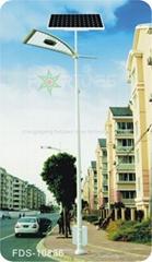 太陽能路燈 FDS-10836