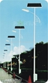 FDS-10842 solar road light