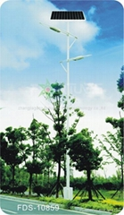 FDS-10859 solar road  light
