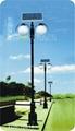 太陽能路燈 FDS-10813