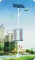 太陽能路燈 FDS-10825