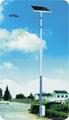 太陽能路燈 FDS-10833