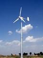 wind power dynamotor