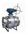 Q347F/H蝸輪傳動固定式球