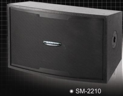 SAMON三木音響SM-2210 雙10舞臺音箱 1