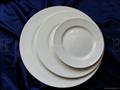 ceramic flat plate
