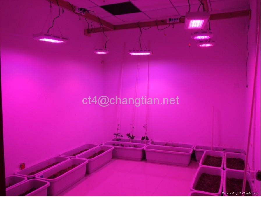 home 90w ufo led grow light best for growing of medical marijuana and. Black Bedroom Furniture Sets. Home Design Ideas