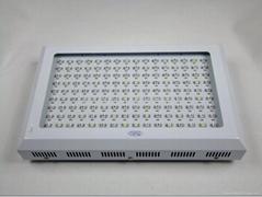 300W led 植物燈