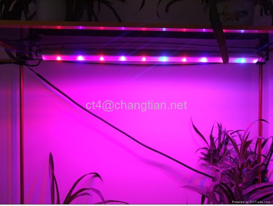 10w led grow tube grow light best for medical herbs and. Black Bedroom Furniture Sets. Home Design Ideas