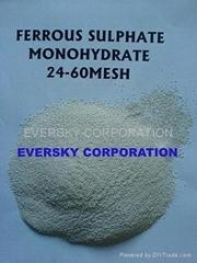 Ferrous Sulfate Mono 6-14mesh, 12-14mesh, 20-60mesh