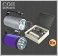 RJW7101手提式防爆探照燈 1