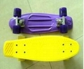 Fish skateboard/plastic skateboard