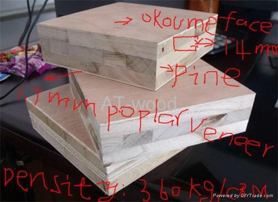 China nature blockboard fir core 5