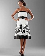 White house Black market embroidery dress