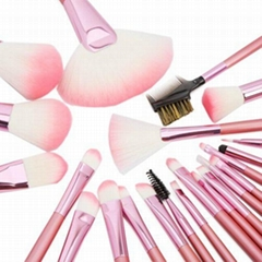 2013 New Complete 22pcs Professional Cosmetic Makeup Brush Set with Pink Bag