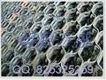 龜甲網 3
