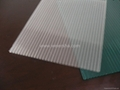 triple wall,double wall polycarbonate hollow roofing sheet 4
