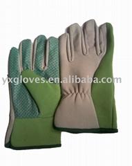 Garden & Safty gloves