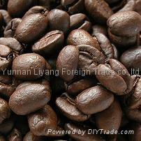 云南小粒咖啡厂家