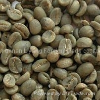 Arabica green coffee beans from coffee manufacturer