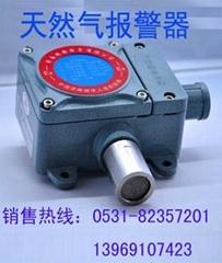 天然氣探測儀