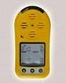 防爆型可燃氣體探測器 2