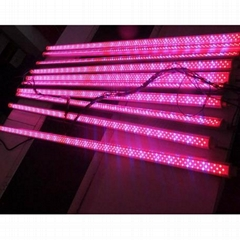 18W T8 Led grow tube light